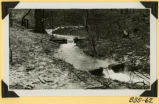 Fort Hill, log check dams photograph