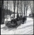 Horse-drawn sled on snowy roads
