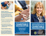 Guide to annual online registration for your charitable organization