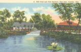 Blue Hole mill pond and fish hatchery postcard
