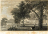 Grounds at Blithewood engraving