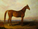 'American Eclipse' racehorse painting