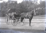 Horse and Buggy With Two Children