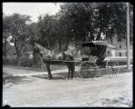 Horse and buggy on Henderson Avenue
