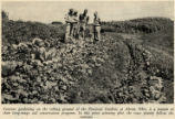 Firestone World War II Garden Photograph