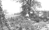 Taylorsville Dam Construction Camp Garden Photograph