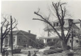 Xenia Carnegie Library after 1974  Tornado Photograph