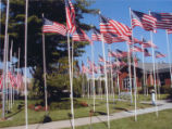 Boulevard of 500 Flags Photograph